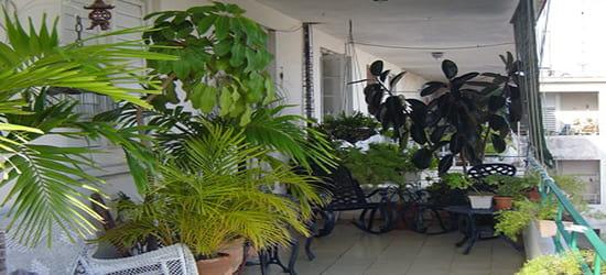 Casa Particular Mylena y Otto Habana